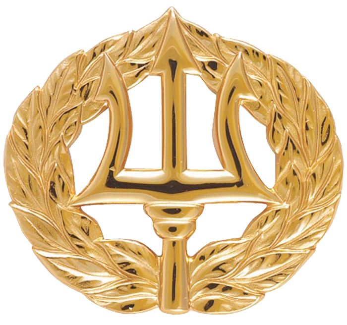 Command Ashore Pin